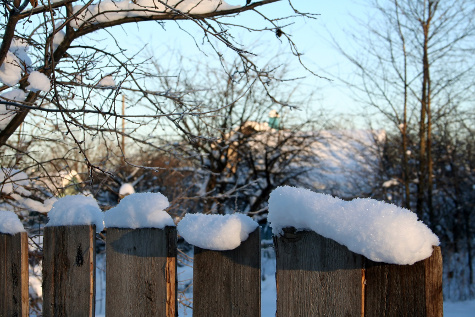 Snow on a fence. Photo credit: Photoxpress.com